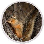 Apache Fox Squirrel Round Beach Towel