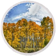 Apen Trees In Fall Round Beach Towel