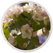 Apple Blossoms 3 Round Beach Towel