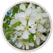 Apple Blossoms On The Trail Round Beach Towel