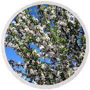 Apple Tree In Bloom Round Beach Towel