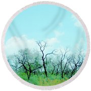 Aransas Nwr Texas Round Beach Towel