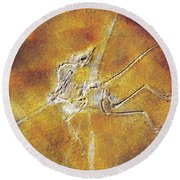 Archaeopteryx Lithographica Round Beach Towel
