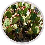 Arizona Prickly Pear Cactus Round Beach Towel