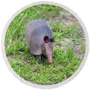 Armored Armadillo 01 Round Beach Towel