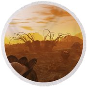 Artists Concept Of Animal And Plant Round Beach Towel