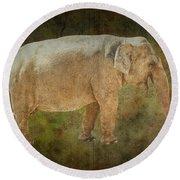 Asian Elephant Round Beach Towel