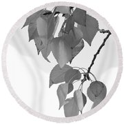 Aspen Leaves In Black And White Round Beach Towel