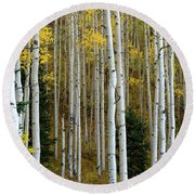 Aspen Trunks Round Beach Towel