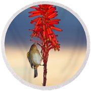 Atlantic Canary Round Beach Towel