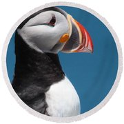 Atlantic Puffin Round Beach Towel