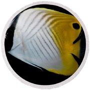 Auriga Butterfly Fish Round Beach Towel