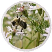 Autumn Bumblebee And Flowers Round Beach Towel