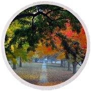 Autumn Canopy Round Beach Towel