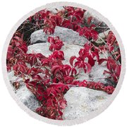 Autumn Color Is Red Round Beach Towel