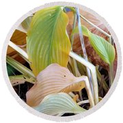 Autumn Composition Two Round Beach Towel