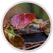 Autumn Ivy In Red Round Beach Towel