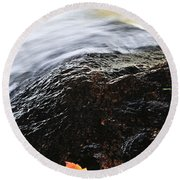 Autumn Leaf On River Rock Round Beach Towel by Elena Elisseeva