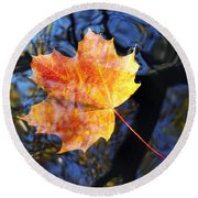 Autumn Leaf On The Water Level Round Beach Towel