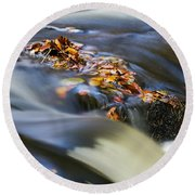 Autumn Leaves In Water Round Beach Towel