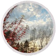 Autumn Maple And Sky Round Beach Towel