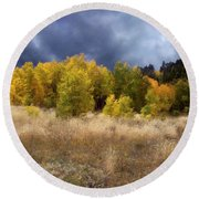 Autumn Meadow Round Beach Towel by Carol Cavalaris