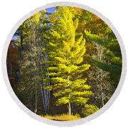 Autumn Scene Of Colorful Trees On The Little Manistee River In Michigan No. 0855 Round Beach Towel