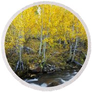 Autumn Stream Iv Round Beach Towel