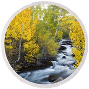 Autumn Stream V Round Beach Towel