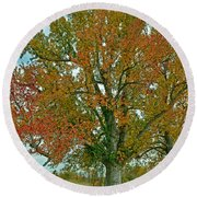 Autumn Sweetgum Tree Round Beach Towel