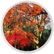 Autumn Sycamore Tree Round Beach Towel