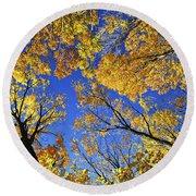 Autumn Treetops Round Beach Towel