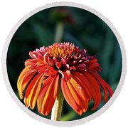 Autumn's Cone Flower Round Beach Towel