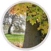 Autumn's Gold Round Beach Towel