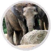 Baby Elephant Round Beach Towel