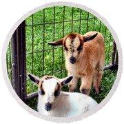 Baby Goats Round Beach Towel