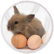 Baby Rabbit With Eggs Round Beach Towel
