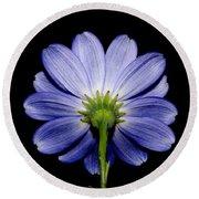 Backside Of A Blue Flower Round Beach Towel