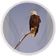 Bald Eagle - Pride Of America Round Beach Towel