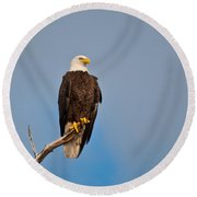 Bald Eagle - Symbol Of Justice Round Beach Towel