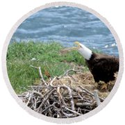 Bald Eagle Calling Round Beach Towel