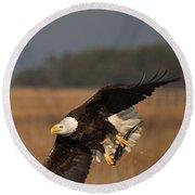 Bald Eagle Catches Fish Round Beach Towel