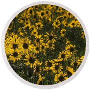 Balsamroot Field In Grand Teton Round Beach Towel