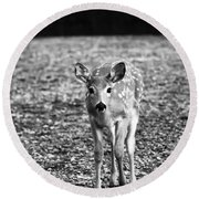 Bambi In Black And White Round Beach Towel