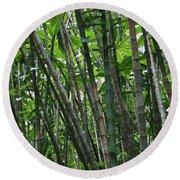 Bamboo 2 Round Beach Towel
