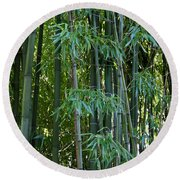 Bamboo Tree Round Beach Towel by Athena Mckinzie