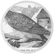 Barn Owl, 1877 Round Beach Towel