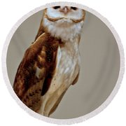 Barn Owl Of Michigan Round Beach Towel