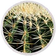 Barrel Cactus Round Beach Towel