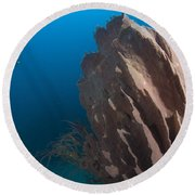 Barrel Sponge And Diver, Papua New Round Beach Towel